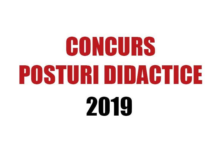 concurs posturi didactice pe perioada determinată 2019